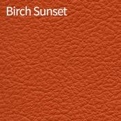 Birch-Sunset-400x400.png