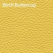 Birch-Buttercup-400x400.png