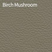 Birch-Mushroom-400x400.png