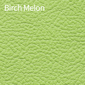 Birch-Melon-400x400.png