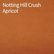 Notting-Hill-Crush-Apricot-400x400.png