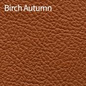Birch-Autumn-400x400.png
