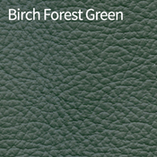 Birch-Forest-Green-400x400.png