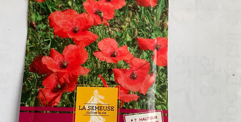Coquelicot perfection simple rouge