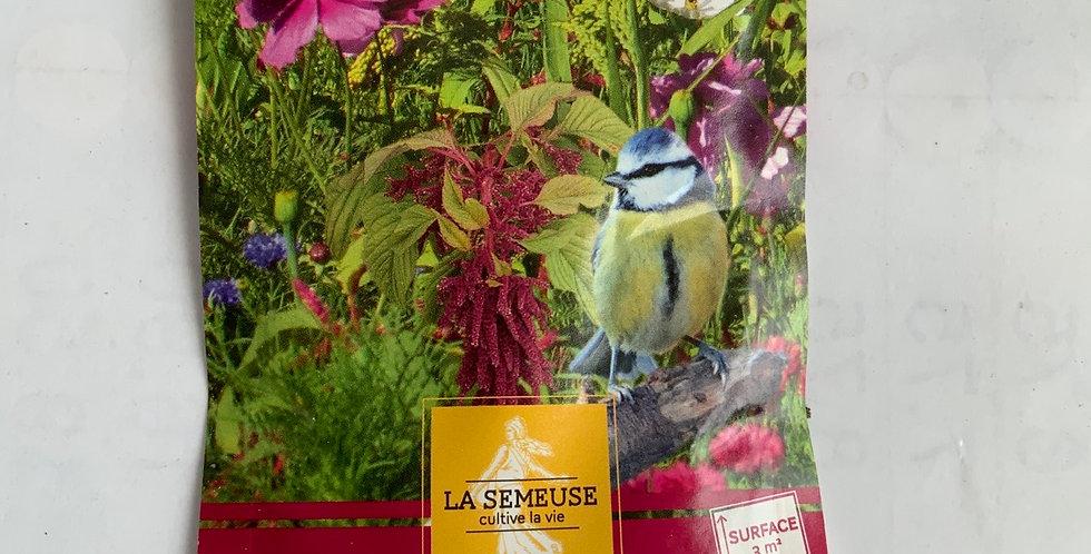 Mélange de fleurs annuelles pour oiseaux