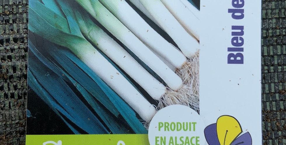 Poireau bleu de solaise pot env 40