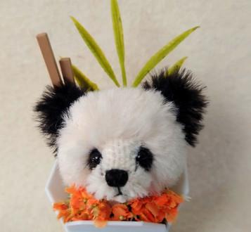 Bear Sprout #51 5 Panda 2.jpg