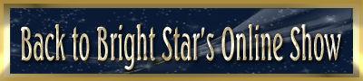 online-show-skinny-banner_edited-1_003.j