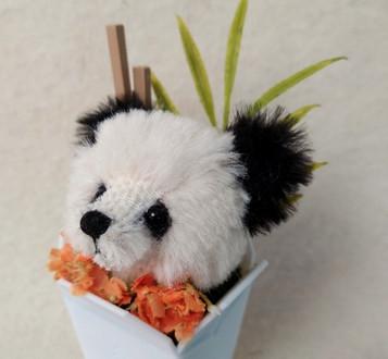 Bear Sprout #51 4 Panda 2.jpg
