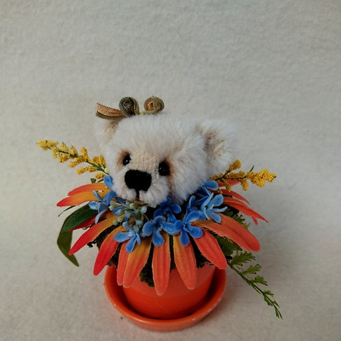 Bear Sprout #10
