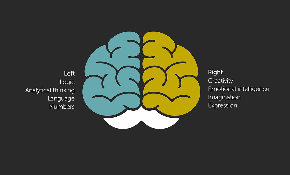 Left and right of the brain
