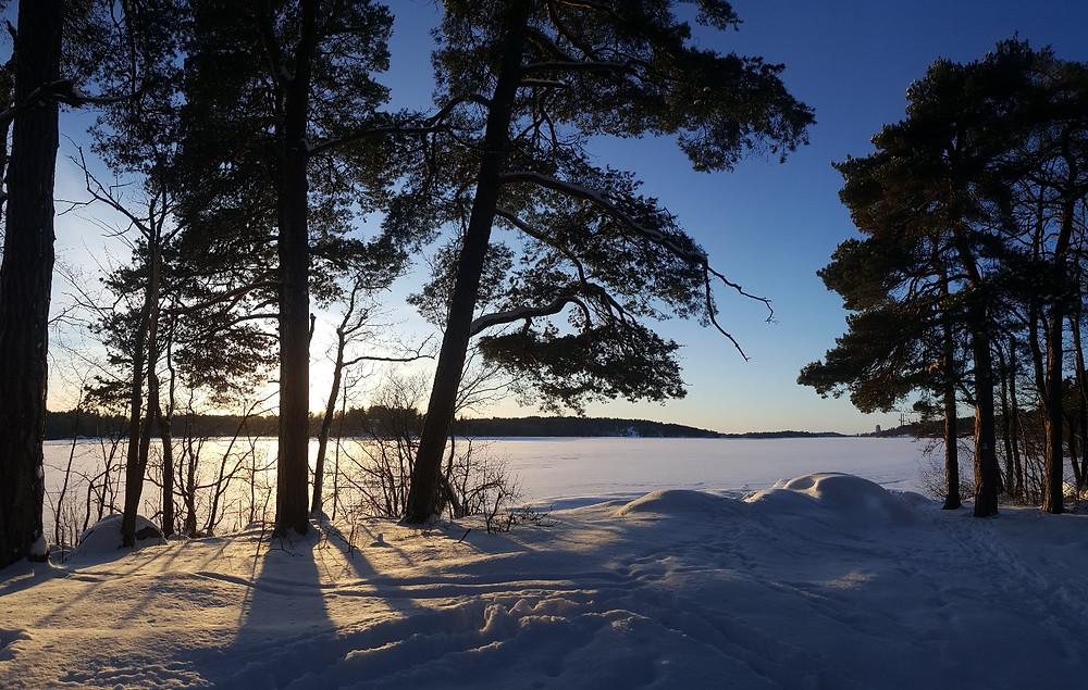 Vintern och våren möts i mars - i sommar blir det bröllop. Grimsta naturreservat med vy över Mälaren och Färingsö, Stockholm