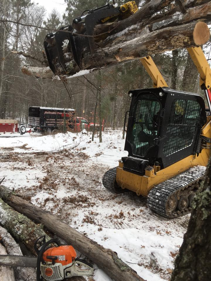 Peshtigo lot clearing by zielinski tree services