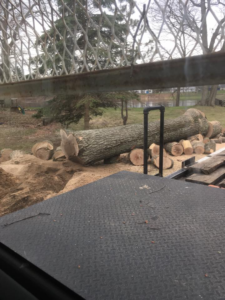 Menominee Michigan Tree Removal Project- Zielinskis Tree Services 3