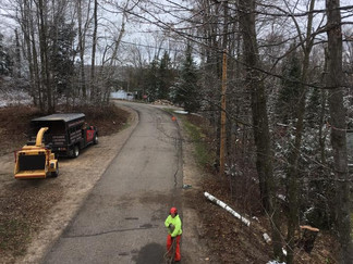 Tree Removal Project at Roberts Lake Wisconsin