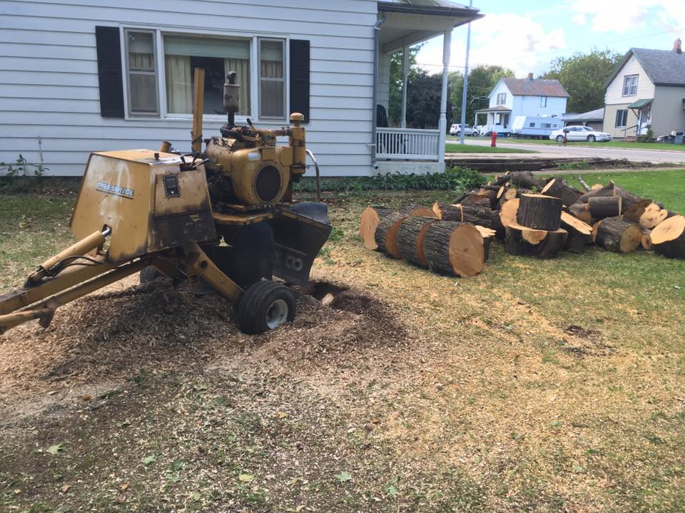 Grinding down a small stump in crivitz wisconsin