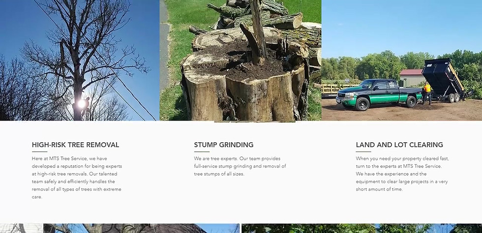 Tree Service Web Design Project | Serving all Wisconsin and Minnesota