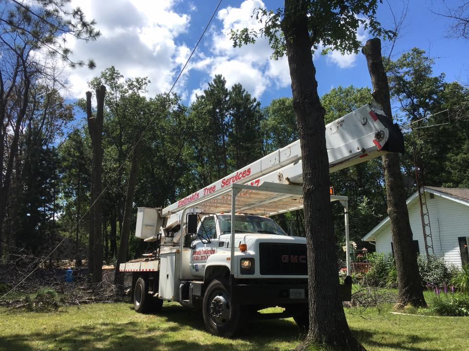 Tree removal wausaukee wisconsin
