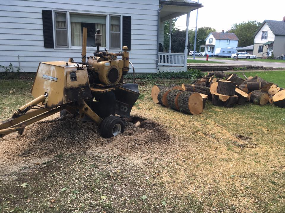 Stump Grinding in Lena Wisconsin