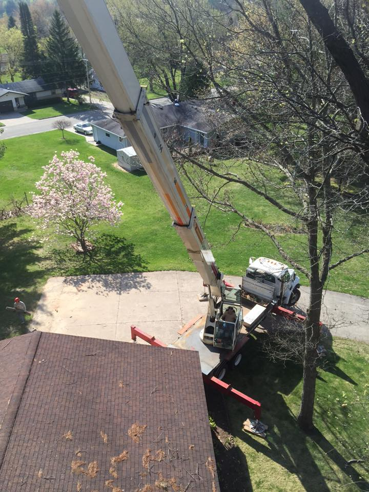zielinski tree services on location in oconto falls 5