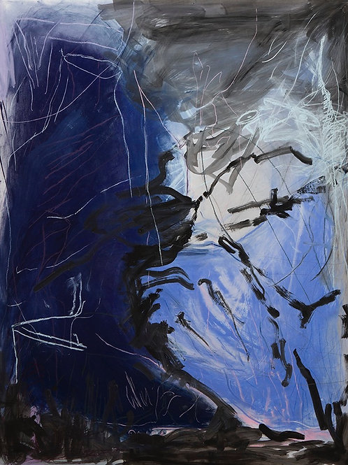 "Rainer Gröschl, ""In the Deep"", C-Print"