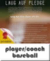 button-pledge4pc-baseball.jpg