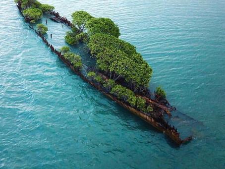Mapeamento Costeiro e Marinho Raso