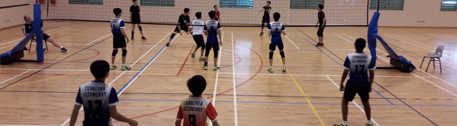 volleyball 4.jpeg