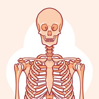 hachette | corps humain