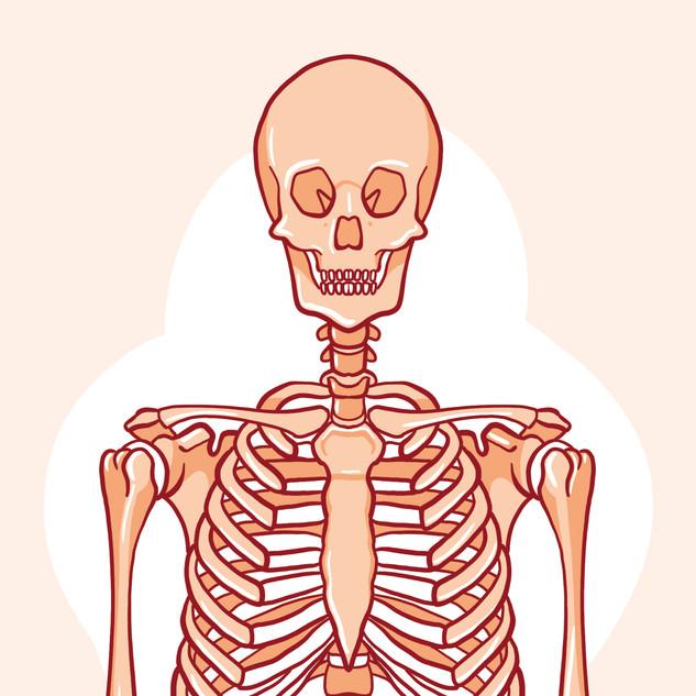 hachette   corps humain