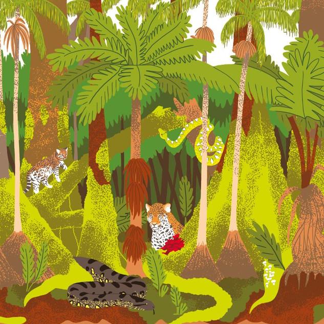wapiti   forêt amazonienne