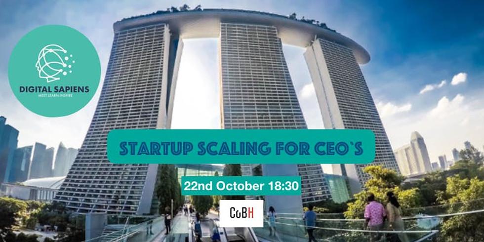 Startup Scaling CEO Workshop