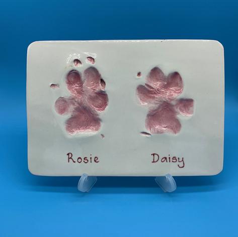 Lasting Impression Paws
