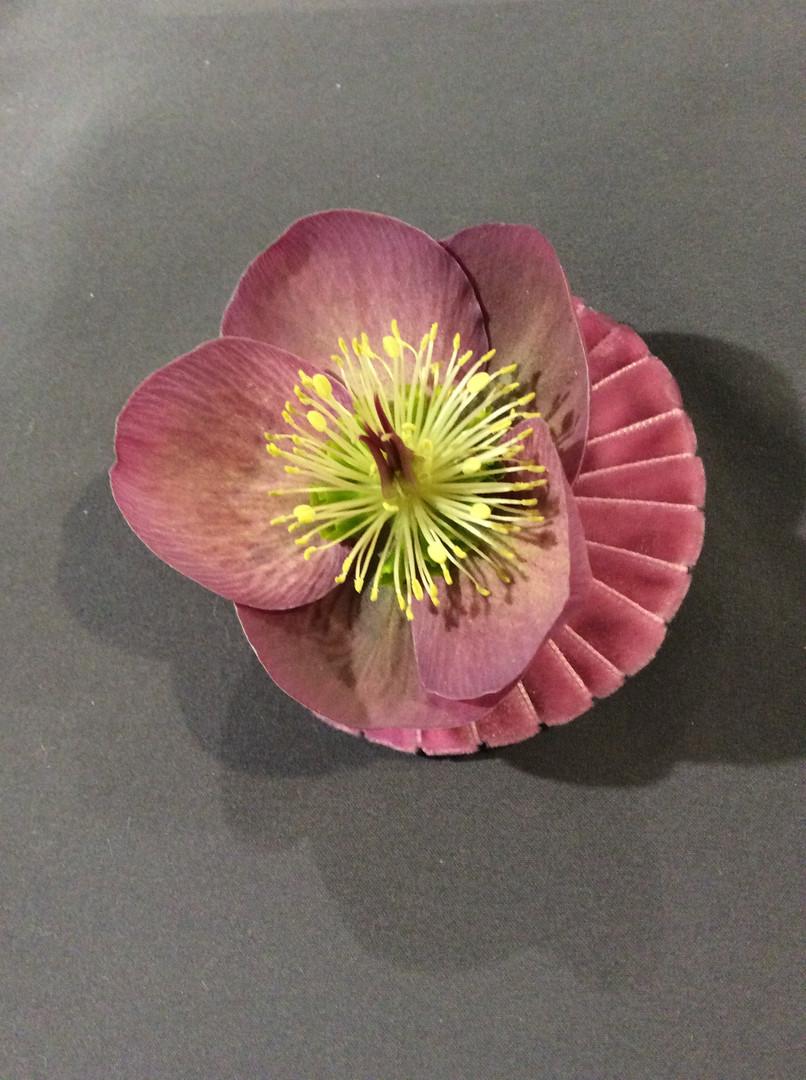 Anstecker Blumenhaus Samstagern