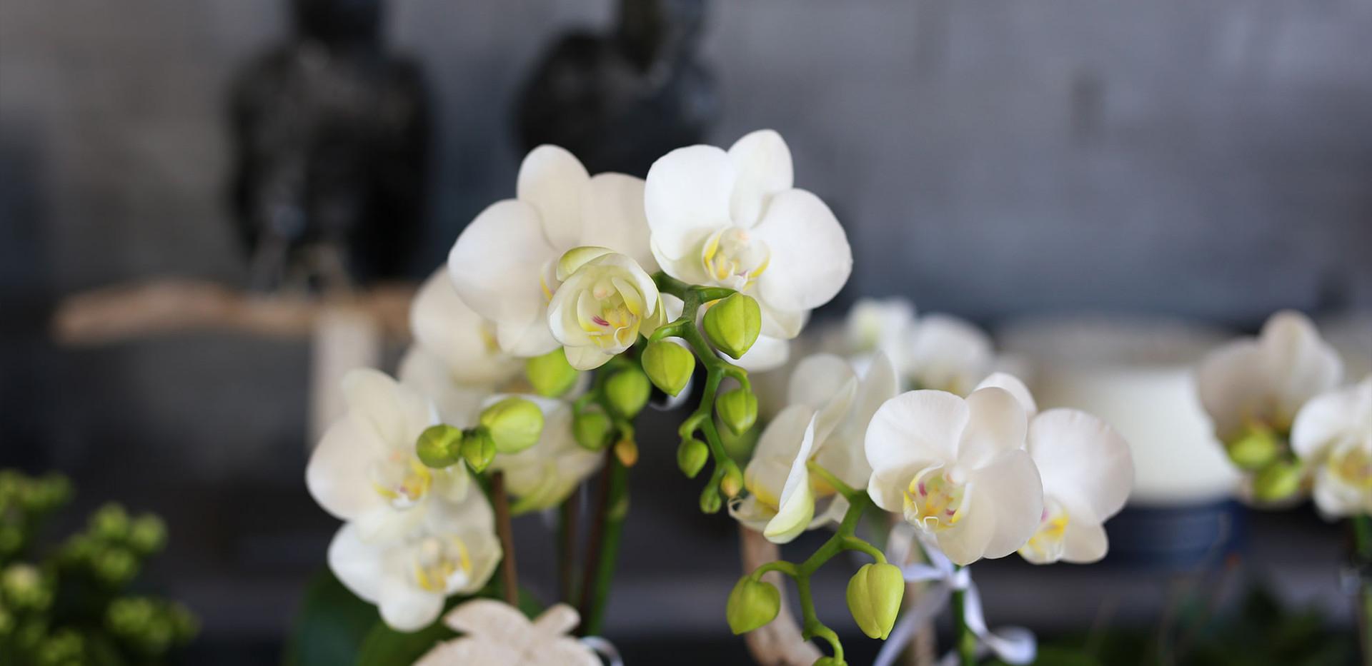 Blumen-perlen-Samstagern3.jpg