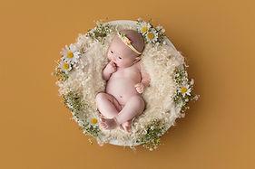 daisy-bowl-composite-baby-jelly-baby-bri