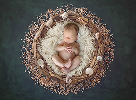 digital-wreath-jelly-baby-newborn-photog