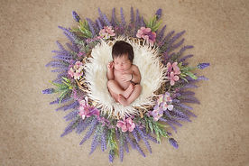 pink-wreath-baby-newborn-photo-shoot-hom