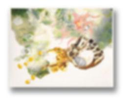 anemone-fusion_5.jpg