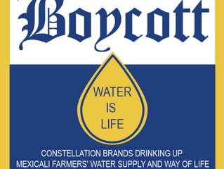 BOYCOTT/ WATER IS LIFE/EL AGUA ES VIDA