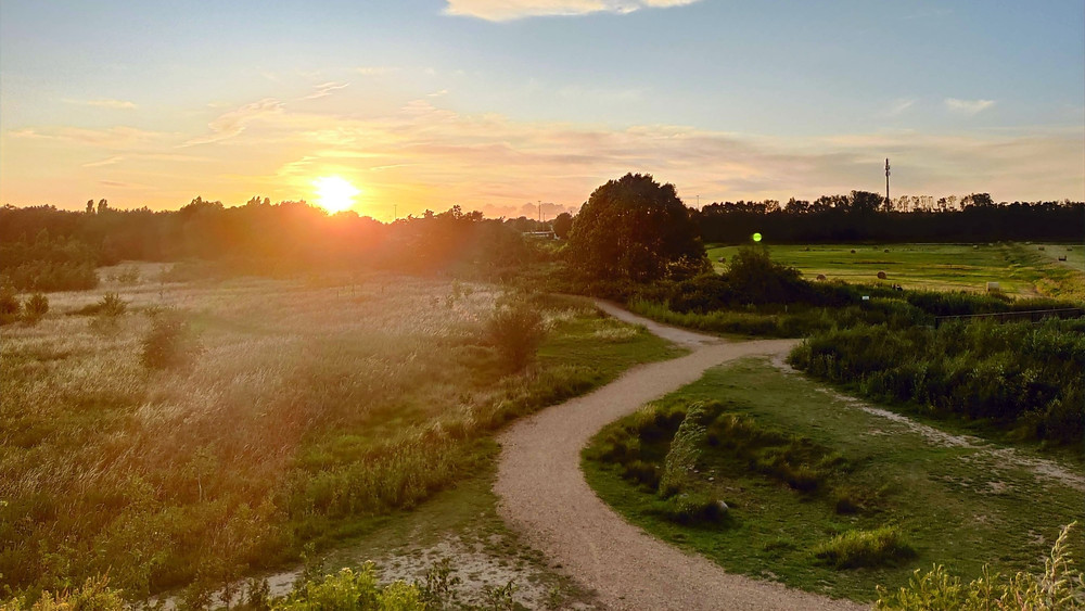 Sunset nature park