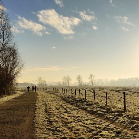Ghent's Nature Reserve The Bourgoyen-Ossemeersen