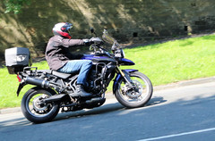 Harley Davidson Rally 31.jpg