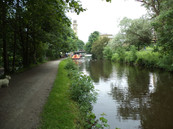 Canal at Hirst lock