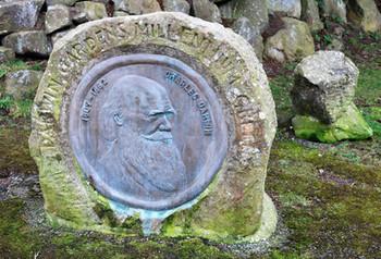 Darwin gardens monument