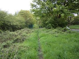 Path alonside buck woods Thackley