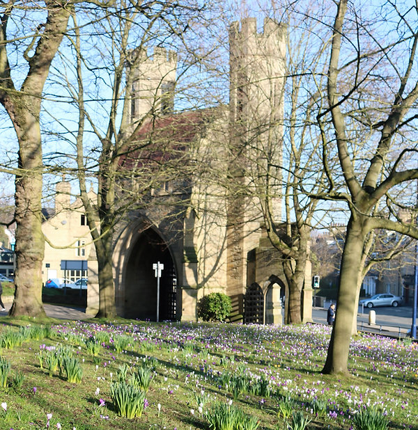 Norman Arch surrounded by crocus