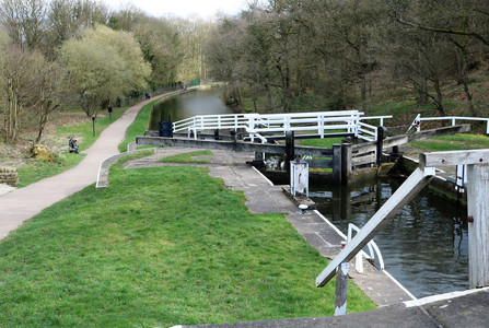 View of Field locks 2 riser lock