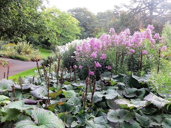 sensory garden flower bed lister park