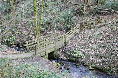 Darwin gardens bridge over stream